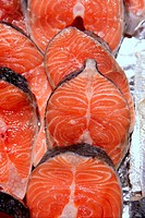 Salmon fish vivid slices in a row