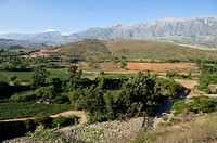 Bolivia. Cochabamba department. Landscape in Chapare province.