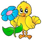 Chicken holding big flower _ isolated illustration.