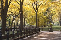 USA, New York City, Autumn scene in Central Park