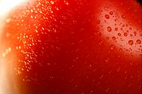 Red tomato macro over green background