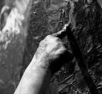 Children dirty black hands, paint game