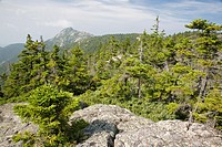 Mount Chocorua from Middle Sister Trail in the White Mountains, New Hampshire USA on a early hot and hazey summer day  Pieces of the old fire tower on...
