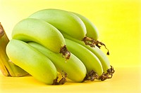 Bunch of banana fruits