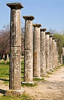 Doric columns amongst the ruins of the palaestra at ancient Olympia, Peloponnese, Greece