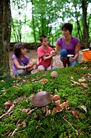 GATHERING MUSHROOMS IN THE FOREST, FAMILY VACATION IN NATURE AT THE HUTTOPIA CAMPSITE, ECO_TOURISM ACCOMMODATIONS MADE UP OF WOOD CABINS, HUTS AND TEN...