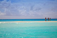 Tourists chatting on sandbank, Cayo De Agua, Archipelago Los Roques National Park, Venezuela, South America