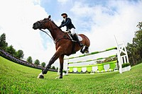 Horseback Rider Jumps over Hurdle