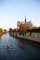 View of Notre Dame, Paris, Ile de France, France, Europe