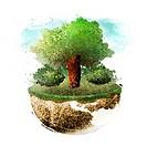 Half Globe And Tree
