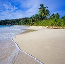 Sandy beach with palm trees, Praslin island, Seychelles