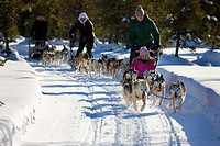 Sled dog tour with huskies