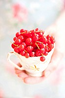 Red currants in a cup.