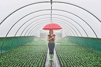 Woman carrying umbrella in greenhouse