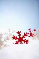 The red and white snowflake on the snow