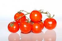 close up tomato