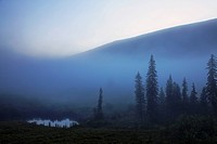 Early morning mist in Wells Grey Provincial Park, British Columbia, Canada, North America