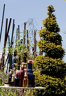PLACES OF CHANGE GARDEN RHS CHELSEA. SPIRAL CONIFER WITH BOTTLES
