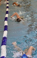 Swimmers practicing for a swim meet