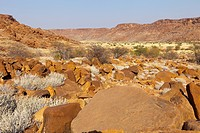 Namibia, Damaraland, rock carvings of Twyfeltontein, listed as World Heritage by UNESCO