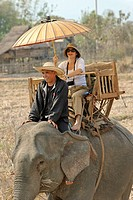 Laos, Sainyabuli Province, Hongsa, trek on elephant back in the middle of rice fields on a palanquin
