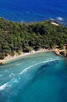 France, Var, Bormes les Mimosas, Cap Breganon beach aerial view