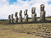 The Ahu Akivi group of Moai statues, Rapa Nui National Park, Easter Island. About 1000 of these megaliths, ranging from 3_12 meters in height and weig...