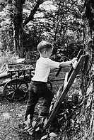 The photograph is captioned: The last nail goes in to the ladder. A young boy puts the finishing touches on his tree fort.