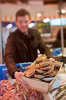 France, Finistere, Brest, Yvon Morvan restaurant, the Armen is his market stall on the fishmonger, Choice of scallops Jacques