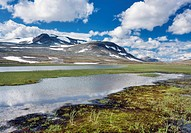 Namnlauselva brook, Saltfjellet-Svartisen National Park, Nordland county, Norway, Scandinavia, Europe