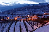 Snow-covered vineyards in the evening twilight, Weissenkirchen in Wachau, Waldviertel, Forest Quarter, Lower Austria, Austria, Europe