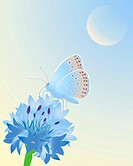 vector illustration of a blue butterfly resting on a cornflower under a blue sky in eps 10 format with gradients