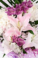 bouquet of lilies and chrysanthemums on a white background