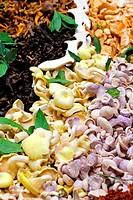 Big assortment of freshly grown mushrooms sold on market