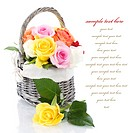 Multicolored roses in a basket over white with sample text
