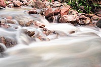 Water on the rocks into the forest