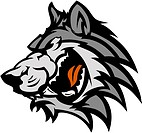 Graphic Team Mascot Vector Image of a Wolf Head