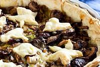 Savory mixed mushroom and leek tart,