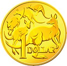 gold one Dollar coin with the image of a kangaroo five