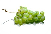Fresh green grapes cluster isolated