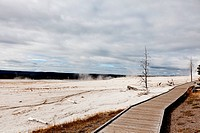 wooden boardwalk in yellowstone national park