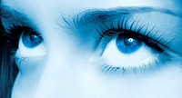 Human blue eye. macro shooting