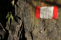 A painted symbol on a rock marking a trail, close_up