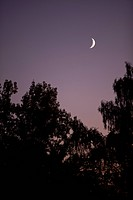 A crescent moon at dusk