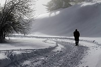 Lone man walking along snow laden path
