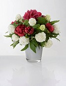 A bouquet of red and white flowers in a vase