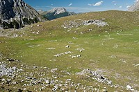 A valley in the Wetterstein Mountains, Austria (thumbnail)