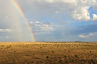 Rainbow over the vast savanna grasslands of Boma National Park, Republic of South Sudan