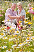 Smiling senior couple drinking wine and having picnic in field of wildflowers