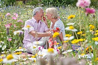 Smiling senior couple eating strawberries and having picnic in field of wildflowers